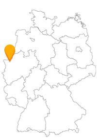 Der Fernbus Dinslaken führt Sie zunächst einmal nach Duisburg, Bottrop, Wesel oder Oberhausen.
