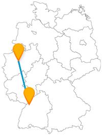 Die Reise im Fernbus zwischen Dortmund und Karlsruhe bringt Sie in verschiedenen Kontexten der Pflanzenkunde näher.