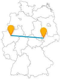 Die Reise mit dem Fernbus von Dortmund nach Leipzig verbindet Gartenschau mit großer Vielfalt an Tieren.