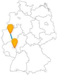 Landesmuseum oder großer Zoo? Vielleicht lassen Sie das auf Ihrer Fernbusreise zwischen Dortmund und Mainz Ihre Kinder entscheiden.