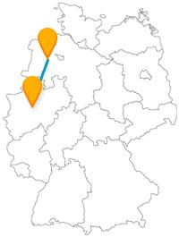 Auf der Reise mit dem Fernbus zwischen Dortmund und Oldenburg erwartet Sie ein hoher Turm und ein alter Baumbestand.