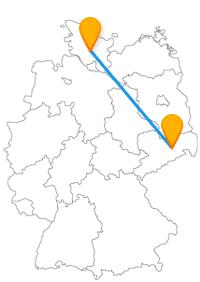 Museumskomplex, Denkmäler und Skulpturen erwarten Sie nach der Reise im Fernbus Dresden Neumünster.
