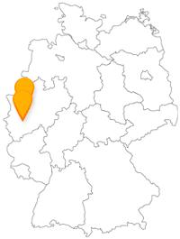 Zur Karnevalszeit ist die Reise mit dem Fernbus von Düsseldorf nach Köln eine wunderbare Verbindung zwischen der längsten Theke der Welt und dem bekannten Fastnachtsumzug.