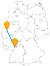 Die Fahrt mit dem Fernbus zwischen Düsseldorf und Mannheim ist nicht nur für Tier- und Naturfans unterhaltsam.