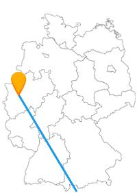 Fühlen Sie sich auf der Reise mit dem Fernbus zwischen Düsseldorf und Rom ein wenig wie ein König.