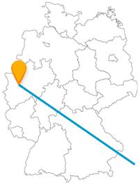 Ob Sisi-Residenz oder japanische Kultur, die Fahrt mit dem Fernbus zwischen Düsseldorf und Wien kann eine kulturell spannende Reise werden.