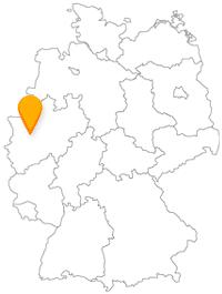 Der Fernbus Düsseldorf ergänzt sich gut mit dem internationale sowie regionalen Busverkehr für Düsseldorf.