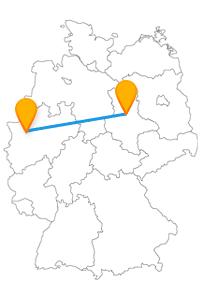 Ob lebendige Tiere oder eine historisch wichtige Grabstätte, die Reise mit dem Fernbus Magdeburg Lübeck wird sicher nicht langweilig.