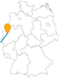 Auf der Reise mit dem Fernbus zwischen Duisburg und Paris erwarten Sie Freizeitspaß und Kultur.