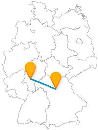 Erleben Sie nach Ankunft mit dem Fernbus von Erlangen in Frankfurt den zweitältesten Tierpark Deutschlands.