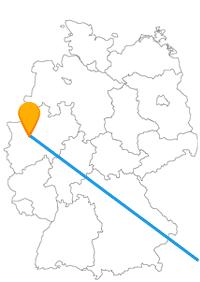 Die Reise mit dem Fernbus von Essen nach Wien fährt von einer grünen in eine sehr kulturelle Stadt.
