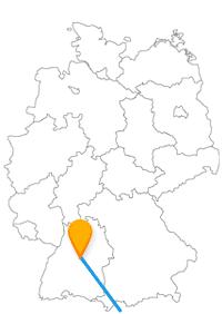 Mit dem Fernbus zwischen Florenz und Stuttgart gibt es nicht nur Kirchen oder Tiere zu entdecken.