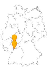 Je nachdem, was Sie vorhaben, der Fernbus Frankfurt Flughafen Mannheim bringt Sie schnell und günstig zum Flug oder zum Event.