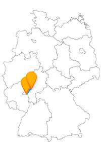 Der Fernbus von Frankfurt nach Mainz bringt Sie zum Staatstheater Mainz und das Museum für Moderne Kunst.