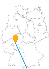 Mit der Fernbusreise zwischen Karlsruhe und Rom können Sie einen guten Museusmvergleich zweier Länder machen.