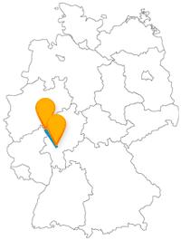 Entdecken Sie auf Ihrer Fernbusreise von Frankfurt nach Siegen einen Brunnen und ein Kunstinstitut.