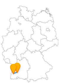 Reisen Sie mit dem Fernbus Freiburg Villingen-Schwenningen zum Schwenninger Moos und dem Haus zum Walfisch.