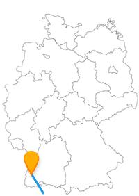 Wenn Sie mit dem Fernbus von Freiburg nach Zürich Flughafen unterwegs sind, können Sie die Alpen und den Basler Hof sehen.