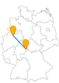Nach Ankunft mit dem Fernbus Fulda Münster kann es mit dem Fahrrad weitergehen oder zu Fuß an vielen schönen Dahlien vorbei.