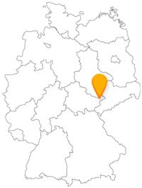 Wer mit dem Fernbus nach Gera fährt, findet vor Ort einen gut organisierten Nah- und Regionalverkehr vor.