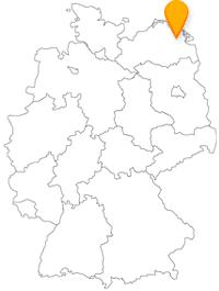 Der Fernbus Greifswald fährt auch europaweit.