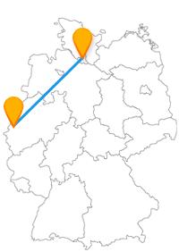 Mit dem Fernbus Hamburg Mönchengladbach müssen Sie sich nicht unbedingt zwischen Amüsement und Kultur entscheiden.
