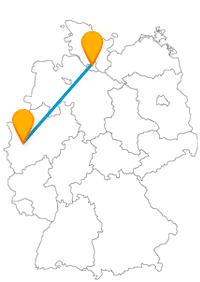 Lassen Sie sich von den vielen Unternehmungsmöglichkeiten auf Ihrer Fahrt im Fernbus Hamburg Neuss nicht durcheinander bringen.