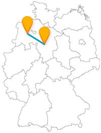 Nicht nur für Pferdeliebhaber ist die Reise mit dem Fernbus zwischen Hannover und Oldenburg interessant.