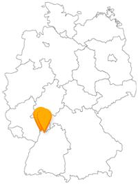 Nach der Fahrt im Fernbus von Heidelberg nach Mannheim erwarten Sie zwei große Flüsse.