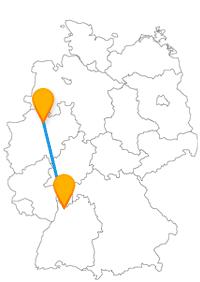 Besichtigen Sie nach der Fernbusfahrt zwischen Heidelberg und Münster Dom, Klosterruinen & Co.