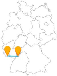 Entweder in natura oder als Exponat, werden Sie auf der Reise mit dem Fernbus zwischen Heidelberg und Saarbrücken viele Pflanzen entdecken.