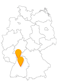 Machen Sie es sich mit dem Fernbus Heidelberg Stuttgart Flughafen einfach, wenn es um eine entspannte Anreise zum Flugzeug geht.