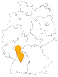 Die Fahrt mit dem Fernbus von Heidelberg nach Stuttgart verbindet große kulturelle Events.