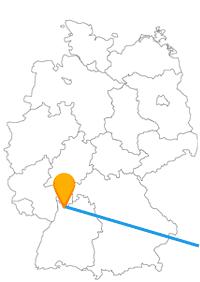 Die Reise mit dem Fernbus von Heidelberg nach Wien bringt Sie in die europäische Kulturmetropole.