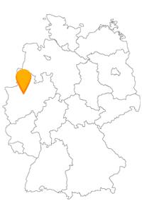 Erkunden Sie nach Ankunft mit dem Fernbus in Herne eine vom Bergbau geprägte kleine Großstadt.