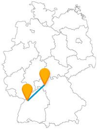 Nach der Fahrt im Fernbus zwischen Karlsruhe und Würzburg erwarten Sie entweder Tiere oder Welterben.