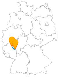 Entdecken Sie mit dem Fernbus zwischen Koblenz und Mainz eine Weltkulturerbe-Festung und ein kurfürstliches Schloss.