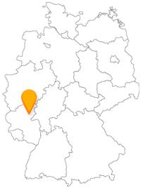 Fahren Sie mit dem Fernbus nach Koblenz und bleiben Sie mit dem Nahverkehr flexibel.