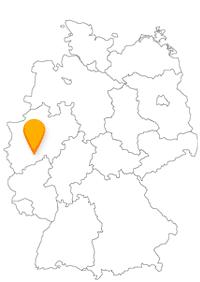 Der Bus und Fernbus Köln Bonn Flughafen bedient gleichzeitig auch die beiden angrenzenden Städte Köln und Bonn.
