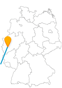 Nicht nur der deutsche Kölner Dom ist auf der Reise mit dem Fernbus Köln Lyon als Kathedrale beliebt.