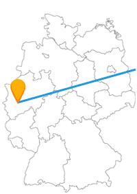 Versüßen Sie sich entweder die Reise im Fernbus Köln - Riga oder machen Sie sich auf eine schaurige Erfahrung gefasst.