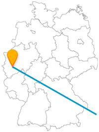 Erleben Sie auf Ihrer Fernbusreise zwischen Köln und Wien beeindruckende und prunkvolle Gebäude.