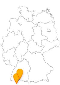 Immerhin sparen Sie mit dem Fernbus Konstanz Zürich an der Busfahrt und können somit die Stadt rundum genießen.