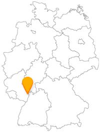 Der Fernbus in Ludwigshafen