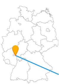 Bei der Reise mit dem Fernbus zwischen Mainz und Wien begleitet Sie der Heilige Stephanus.