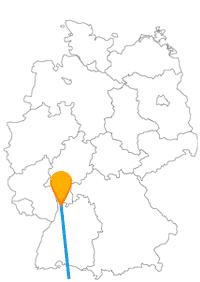 Einkaufsbummel und Blumenpracht erwarten Sie auf der Fernbusreise zwischen Mannheim und Zürich.