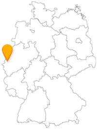 Mit dem Fernbus Mönchengladbach sowie mit dem Stadtbus sind Sie sehr umweltschonend unterwegs.