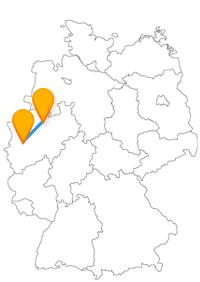 Der Fernbus Münster Neuss eignet sich, um eine der größten Universität Deutschlands zu besichtigen und auch dafür, viele Tiere zu entdecken.
