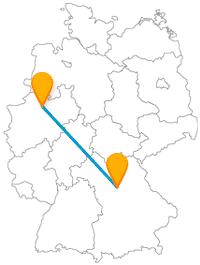 Fahren Sie mit dem Fernbus zwischen Münster und Nürnberg ganz nah an Tiere und Kunstwerke heran.