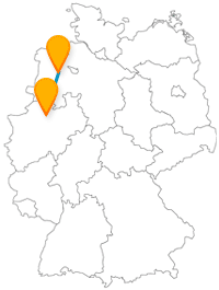 Mit dem Fernbus von Münster nach Oldenburg entdecken Sie Flora und Fauna aus nächster Nähe.
